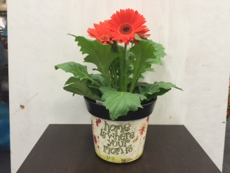 Mom Home keepsake pot